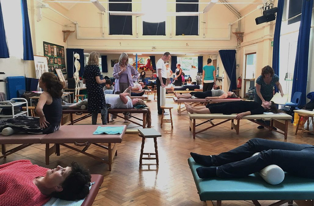 Introductory Three Day Courses for New Feldenkrais Training